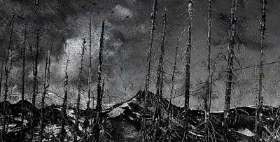 Mountain Pine  Beatle  Print by Jerry Cordeiro