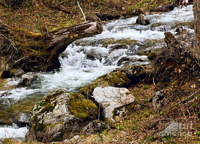 Rock Photograph - Mountain Stream by Les Palenik