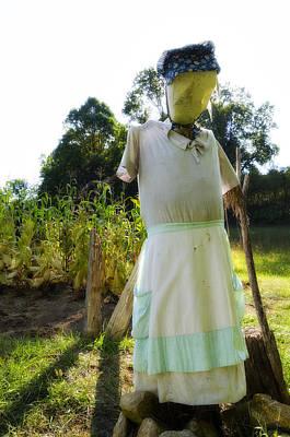 Mrs Scarecrow Print by Steve Hurt