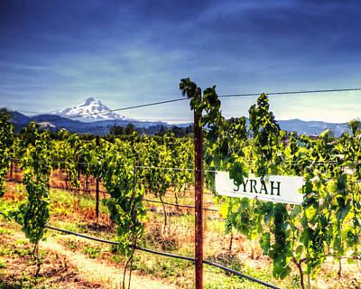 Mt Hood Winery Print by Vicki Jauron