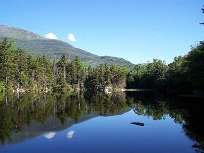 Photograph - Mt Washington And Lost Pond by Frank LaFerriere