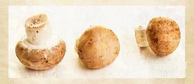 Mushroom Trio Print by Edward Fielding