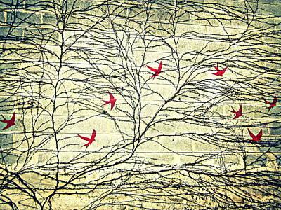 My Beautiful Patios Wall IIi Print by Laura  Gomez