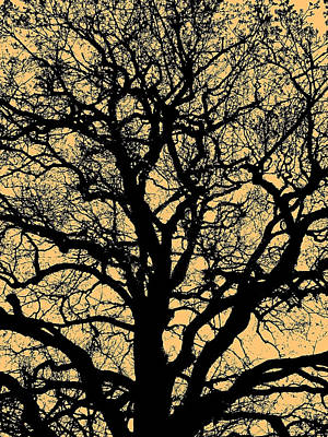 My Friend - The Tree ... Print by Juergen Weiss
