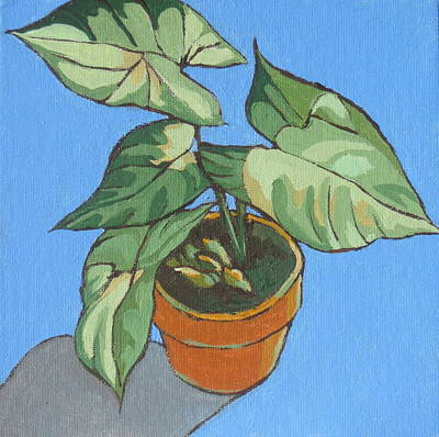 My Plant At Work Print by Sandy Tracey