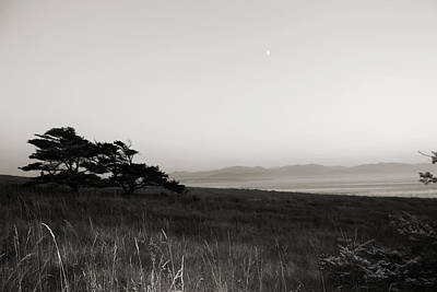 Whidbey Island Wa Photograph - Mysterious by Tracie Skiles