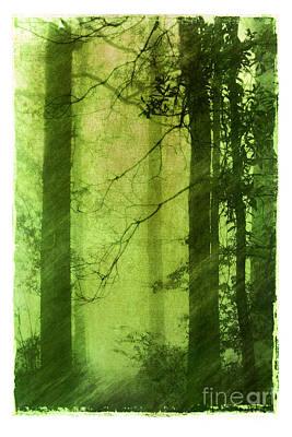 Mystical Glade Print by Judi Bagwell