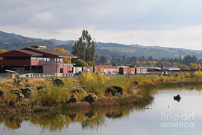 Napa River In Napa California Wine Country Print by Wingsdomain Art and Photography