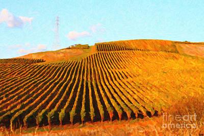 Napa Valley Digital Art - Napa Valley Vineyard by Wingsdomain Art and Photography