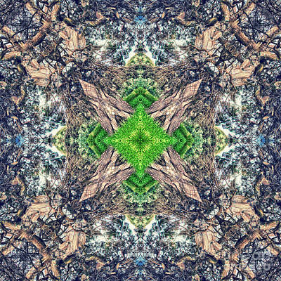 Nature Mandala Print by Stelios Kleanthous