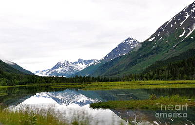 Nature Photograph - Nature's Mirror by Tanya  Searcy