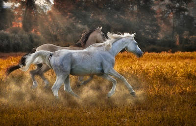 Horse Photograph - Neck And Neck by Susan Candelario