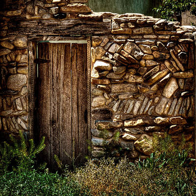 Flowers Photograph - New Mexico Door II by David Patterson