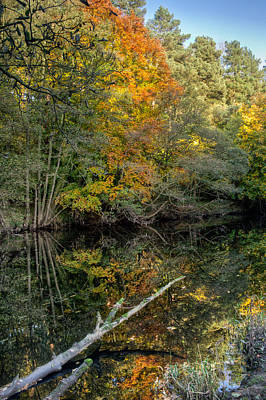 Knaresborough Photograph - Nidd Gorge Autumn Reflections by Chris Frost