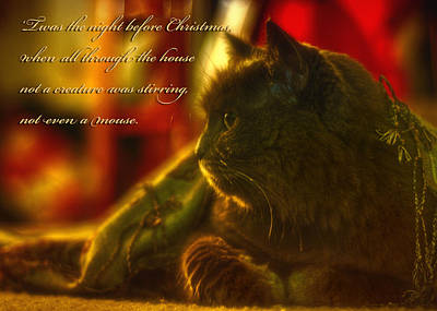 Night Before Christmas... Print by Joann Vitali