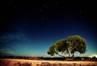 Sonora Photograph - Night by by Paco Espinoza