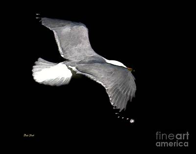 Night Flight Print by Dale   Ford