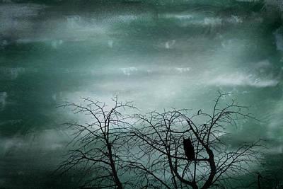 Night Owl Print by Georgia Fowler