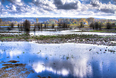 Water Photograph - Nisqually Wildlife Refuge P13 by David Patterson