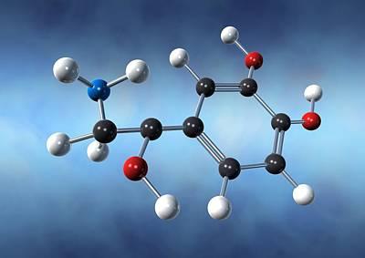 Norepinephrine Neurotransmitter Molecule Print by David Mack