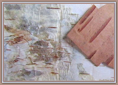 Normand's  Birch Bark  Print by Danielle  Parent