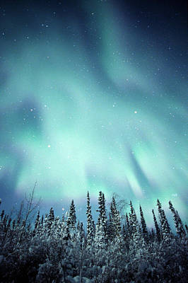 Northern Lights Over Snow Covered Print by Robert Postma