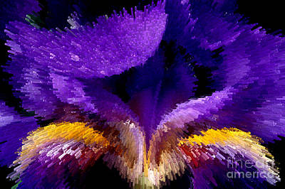 Not Your Average Iris Print by Paul W Faust -  Impressions of Light