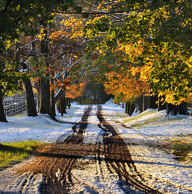 Country Dirt Roads Digital Art - October Road by Bill Cannon