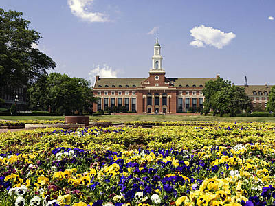 Osu Photograph - Oklahoma State Flowers Bloom  by Oklahoma State University