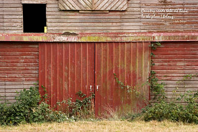 Old Barn Doors Print by Mick Anderson