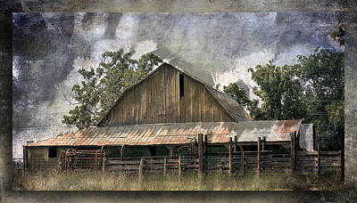 Barn Photograph - Old Cattle Barn by Barry Jones