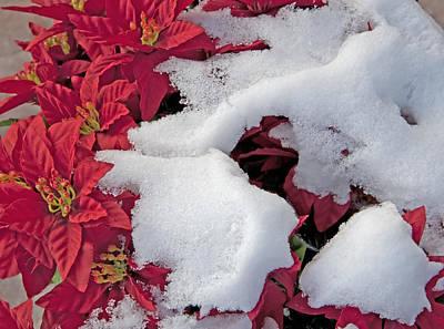 Old-fashioned Christmas 7 - Gardener Village Print by Steve Ohlsen