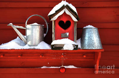 Old Red Birdhouse Print by Sandra Cunningham