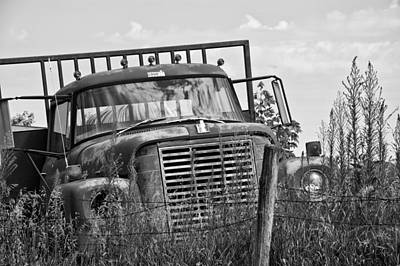 Old Truck In The Weeds Print by Wilma  Birdwell