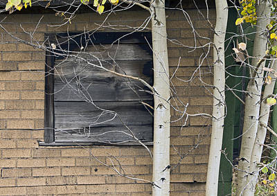 Cabin Wall Photograph - Old Window And Aspen by James Steele