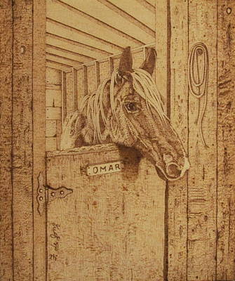 Pyrography Drawing - Omar The Horse Of Course by Fay De Jong