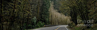 Oregon Photograph - On The Road Again by Tanya  Searcy