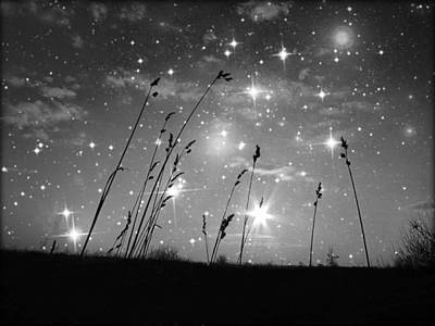 Hope Photograph - Only The Stars And Me by Marianna Mills