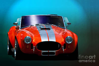 Orange Cobra Print by Stuart Row