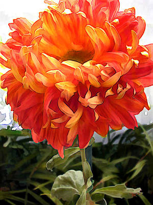 Mums Painting - Orange Pom Pom Chrysanthemum by Elaine Plesser