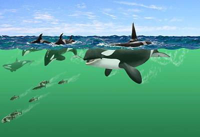 Orca Digital Art - Orcas by Owen Caddy