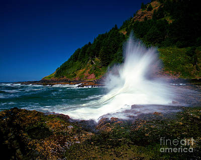 Oregon Photograph - Oregon - Cape Perpetua by Terry Elniski