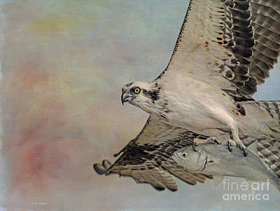 Osprey Mixed Media - Osprey And Fish by Deborah Benoit