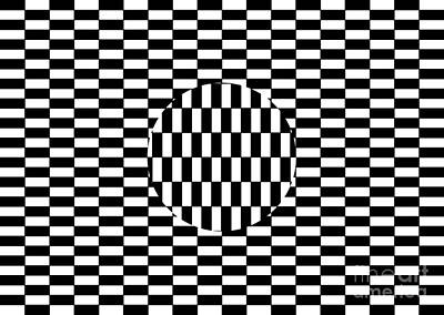 Optical Illusion Photograph - Ouchi Illusion by SPL and Photo Researchers