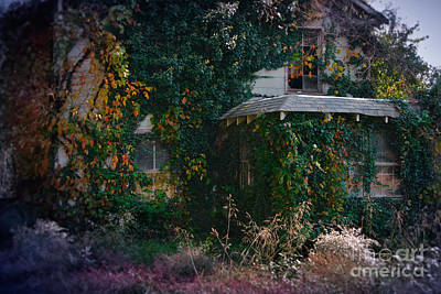 Abandoned House Photograph - Overgrown House Six by Susan Isakson