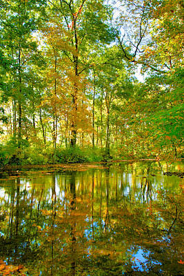Owens Creek In Autumn I Print by Steven Ainsworth