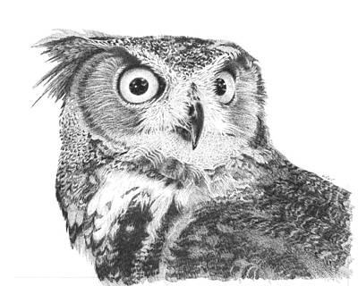 Owl No2 Original by Carol Livingston