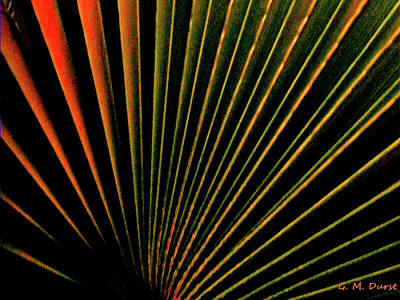 Sunset Abstract Digital Art - Palm Lines by Michael Durst