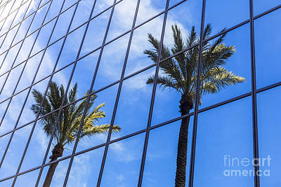 Palm Trees Reflection On Glass Office Building Print by Paul Velgos