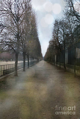 Paris Nature - The Tuileries Row Of Trees  Print by Kathy Fornal